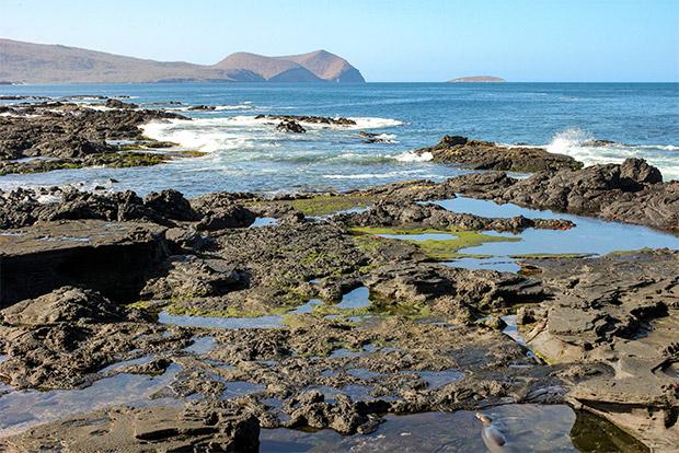 Cruceros baratos a las Islas Galápagos abril 2017