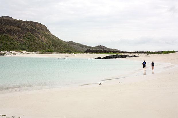 Cruceros con descuento a las Islas Galápagos octubre 2019