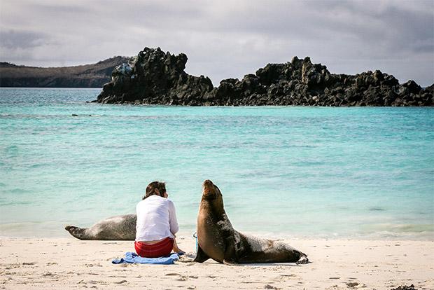 Cruceros para parejas a las Islas Galápagos febrero 2020