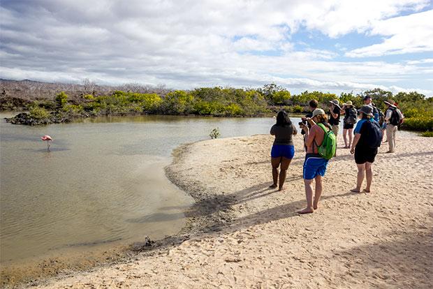 Paquetes Turísticos a islas Galápagos noviembre 2019
