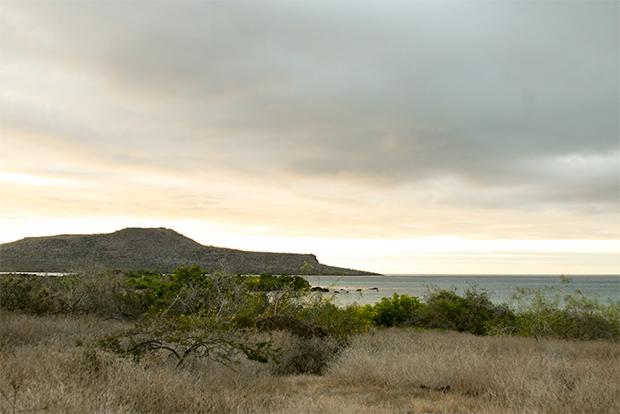 Paquetes Turísticos a islas Galápagos para toda la familia