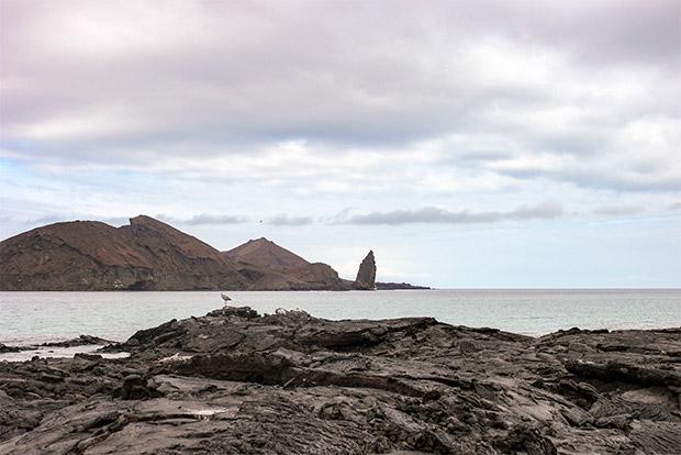 Tours Islas Galápagos julio 2020
