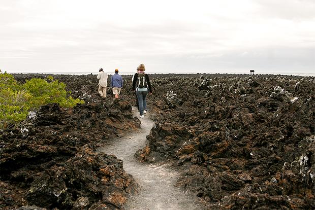 Turismo a Islas Galápagos noviembre 2019