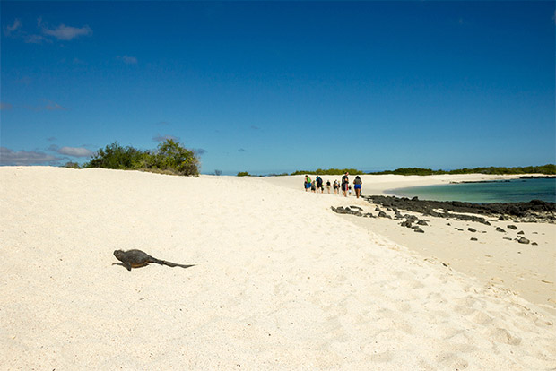 Turismo a Islas Galápagos marzo 2017