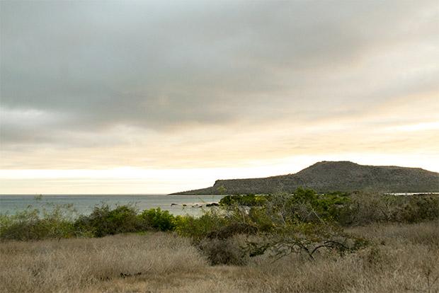 Vacaciones en Islas Galápagos abril 2020