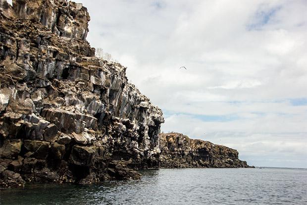 Viajar en Crucero a las Islas Galápagos desde Perú