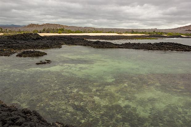 Viajar en Crucero a las Islas Galápagos desde República Checa