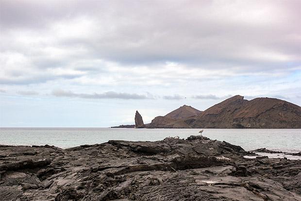 Viajar en Crucero a las Islas Galápagos desde Sudán