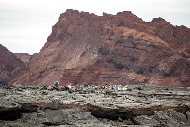Cruises to the Islands Galapagos for 4 people December 2019