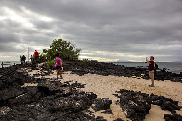 Discount Cruises to the Galapagos Islands December 2019
