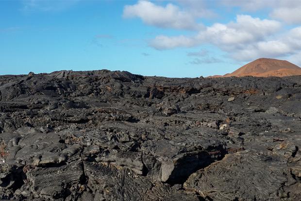 Galapagos Islands Tours December 2019