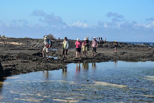 Cruceros a las Islas Galápagos para 15 personas mayo 2018
