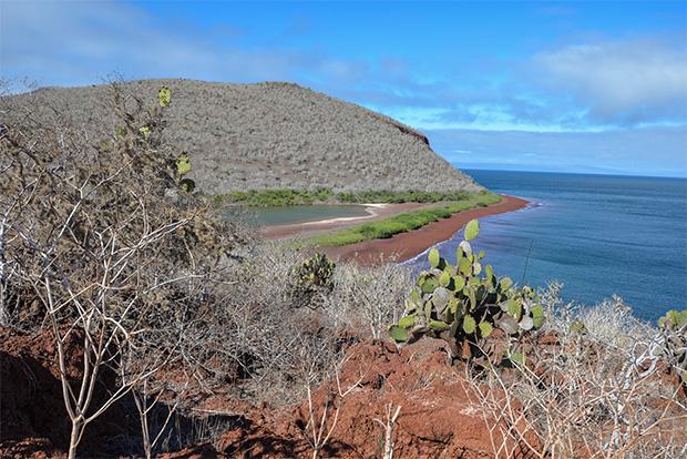 Cruceros a las Islas Galápagos para 5 personas diciembre 2018