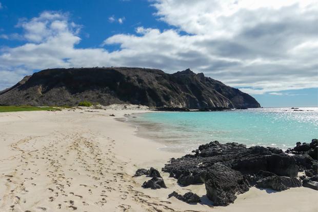 Cruceros a las Islas Galápagos para 9 personas noviembre 2018