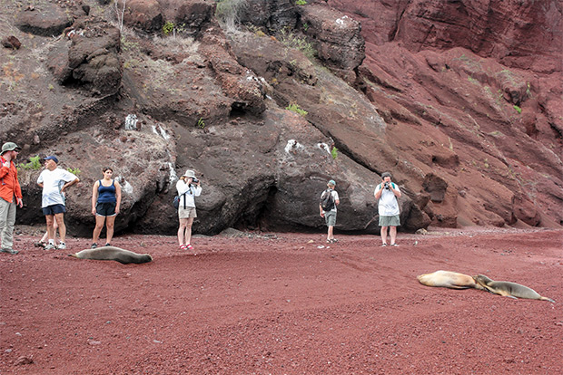 Cruises to the Galapagos Islands for 4 people January 2017