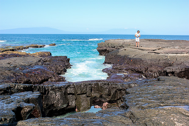 Cruises to the Galapagos Islands for 7 people February 2017