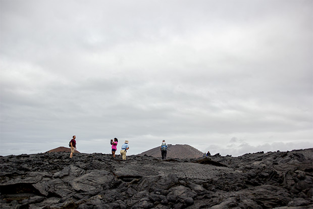 Cruises to the Galapagos Islands for 9 people February 2020