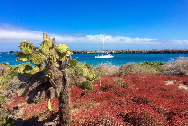 Descuentos y ofertas Islas Galápagos 2018