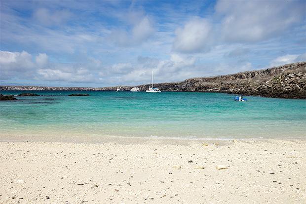 Economy Cruises to the Galapagos Islands February 2020