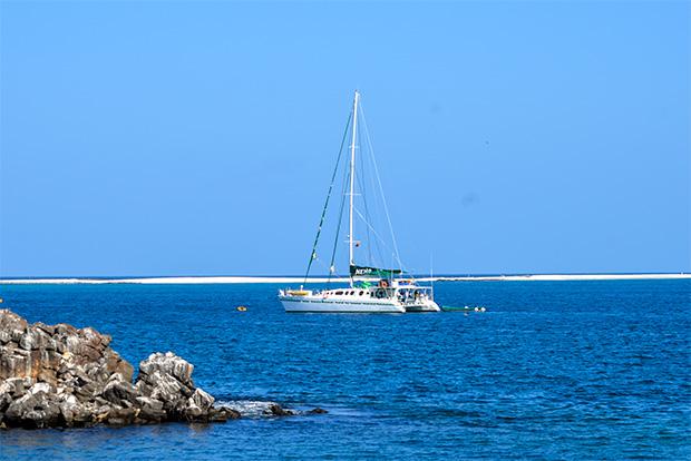 Oferta Cruceros a las Islas Galápagos octubre 2018