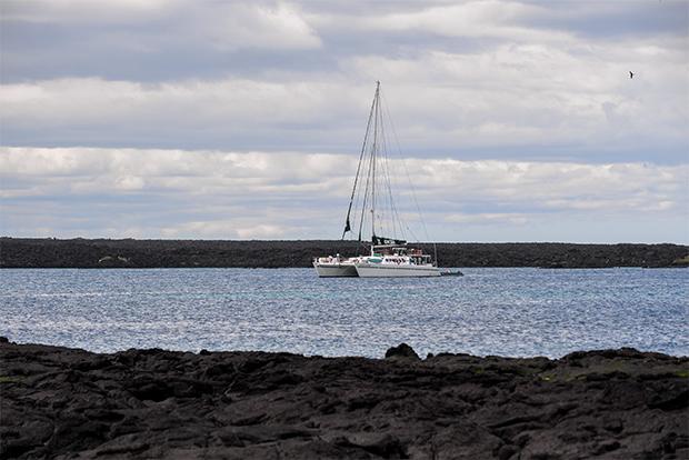Viajes Islas Galápagos Precios 2020