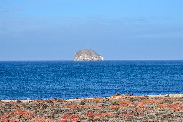 Catamaranes con descuento a las Islas Galápagos Pascua 2018