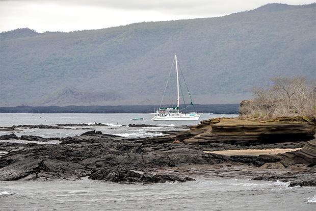 Cruceros a las Islas Galápagos para 13 personas octubre 2020
