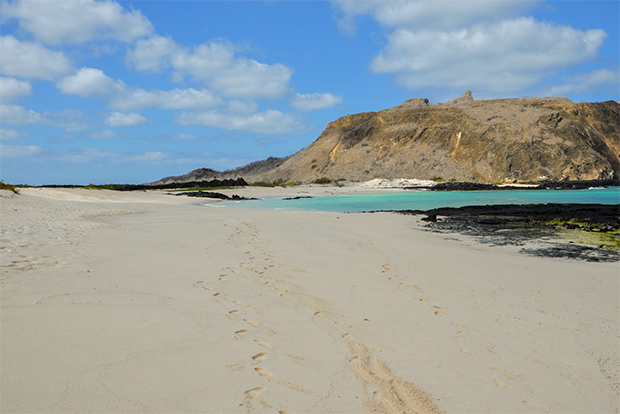 Cruises to the Galapagos Islands for 14 people 2017