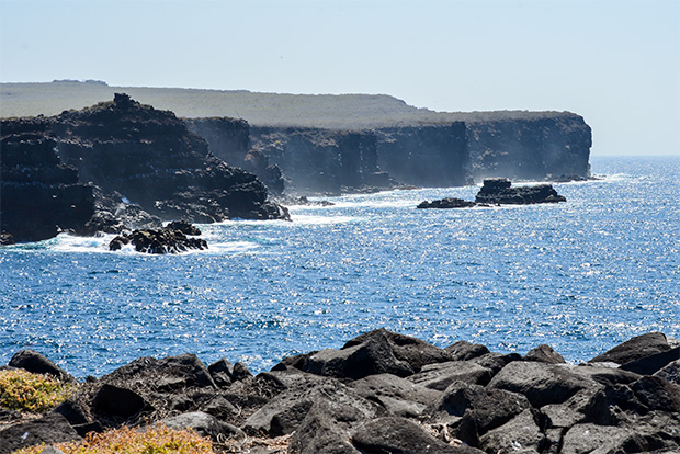Cruises to the Galapagos Islands for 7 people March 2017