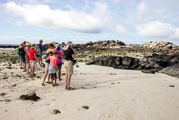 Ofertas de último minuto a las Islas Galápagos septiembre 2020