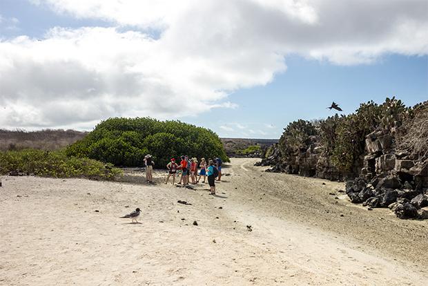 Vacaciones a las Islas Galápagos enero 2018