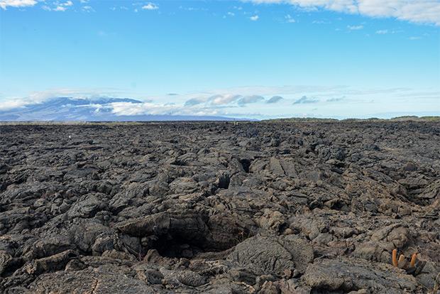 Viajes Express a las Islas Galápagos octubre 2020