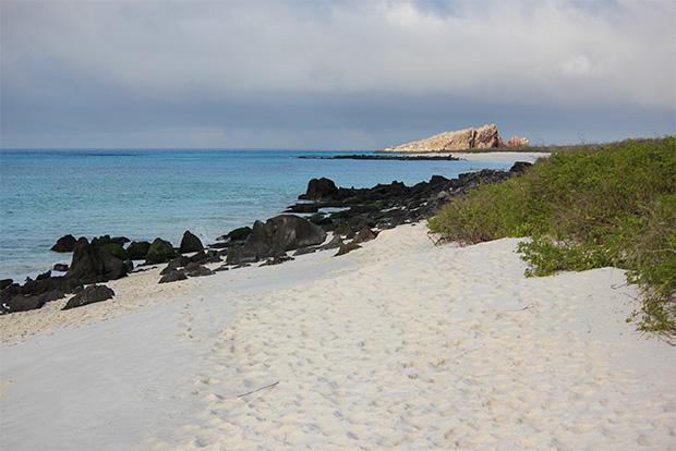 Cruceros a las Islas Galápagos en Septiembre