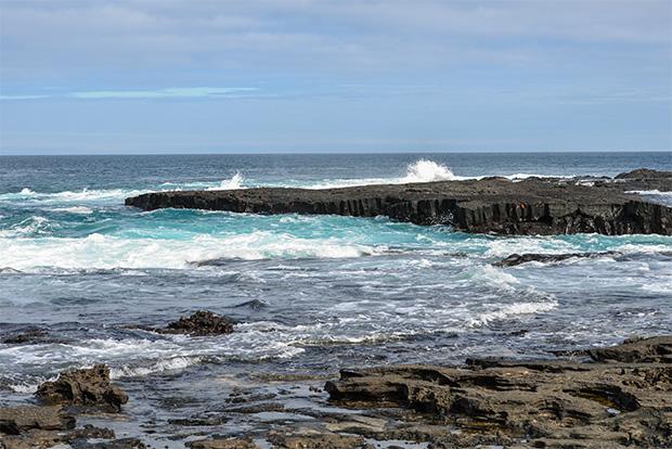 Cruceros románticos a las Islas Galápagos febrero 2018