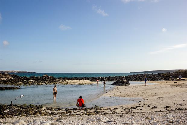 Cumpleaños a las Islas Galápagos agosto 2018