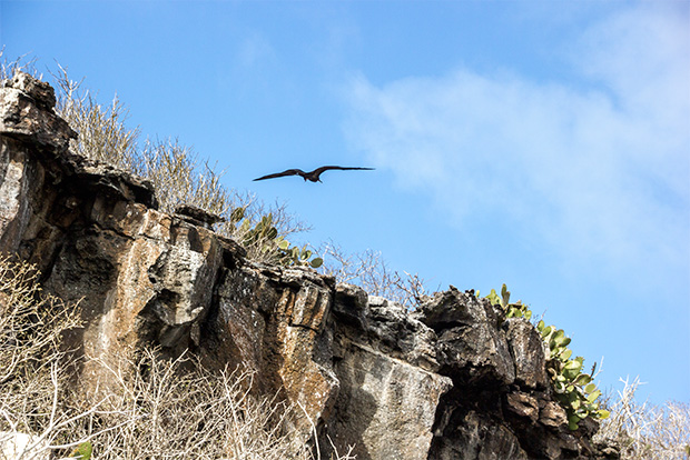 Tours for family to Galapagos Islands