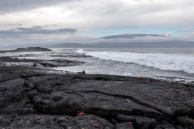 Cruceros último minuto a las Islas Galápagos Semana Santa 2019