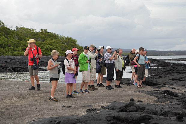Cruceros Galápagos Turista Superior 2020