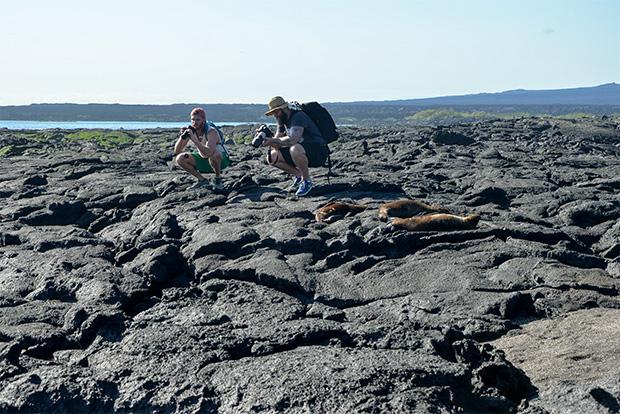 Cruceros a las Islas Galápagos para 9 personas marzo 2018