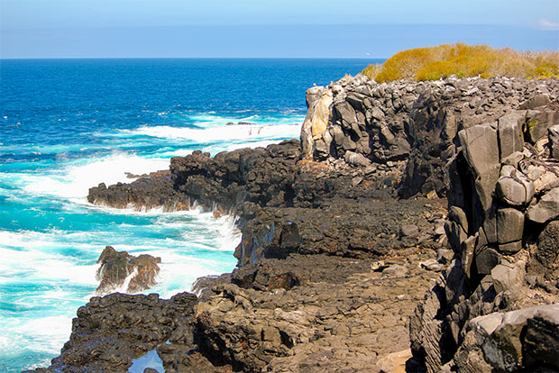 Cruises for couples to the Galapagos Islands June 2020