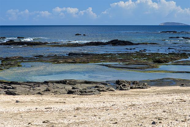 Cruises to the Galapagos Islands May 2020
