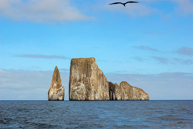 Cruises to the Galapagos Islands for 14 people June 2020