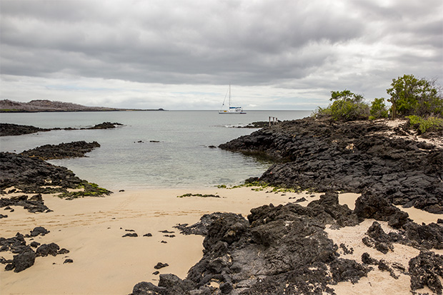 Cruises to the Galapagos Islands for 5 people May 2020