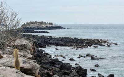 Catamaranes en promoción a las Islas Galápagos Pascua 2018