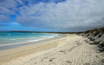Cruceros a las Islas Galápagos para 16 personas septiembre 2019