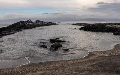 Cruceros románticos a las Islas Galápagos diciembre 2018