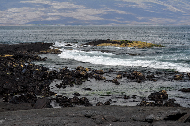 Cruises to the Galapagos Islands for 2 passengers July 2020