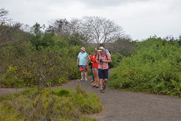 Holidays in Galapagos Islands August 2020
