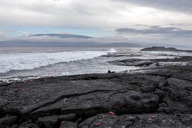 Holidays in Galapagos Islands July 2020