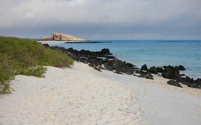 Tours a Galápagos económicos 2019